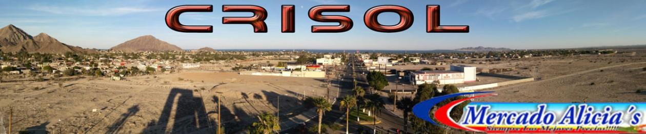 Crisol Virtual